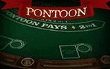 Играть Pontoon Pro Series без регистрации
