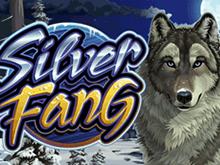 Игровой слот Silver Fang поможет выиграть хорошие деньги